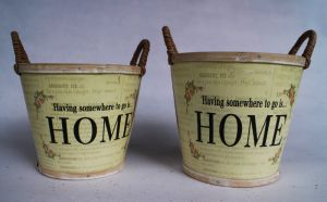 Tender Yellow Factory Direct Quality Practical Flower Pot pictures & photos