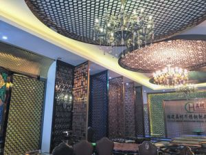 Wholesale Stainless Steel 304 3D Stretch Artistic Ceiling pictures & photos