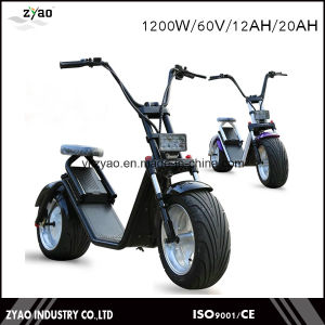 City Coco Electronic Scooter with Portable Battery Removable Waterproof pictures & photos