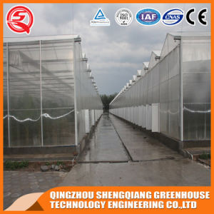 Agriculture Hydroponics Polycarbonate Sheet Venlo Greenhouse pictures & photos