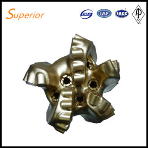 PDC Bit with Steel Body with 5 Blades for Water Gas Oil Drilling From China pictures & photos