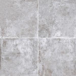 Archaize Cement Porcelain Tile (600X600) pictures & photos