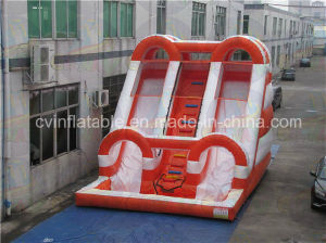 Giant Inflatable Water Slide with Pool for Adult and Kids pictures & photos