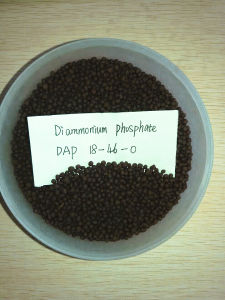 Fertilizer Compound Diammonium Phosphate 18-46-0 DAP pictures & photos