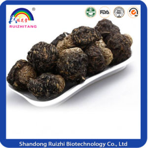 Maca Roots Traditional Chinese Herbal Maca Slices&Chips pictures & photos