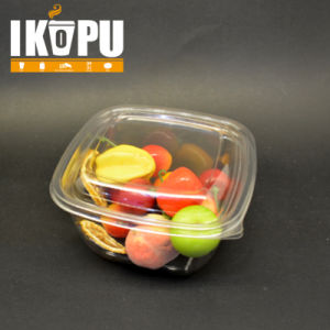 Pet Disposable Plastic Ice Cream Salad Bowl Container Cup pictures & photos