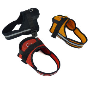 Pet Large and Medium - Sized Dogs Breathable Mesh Cloth Harness pictures & photos