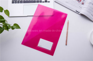 A4 Colorful L Shape File Folder Cover pictures & photos