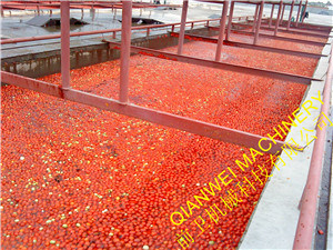 Tomato Sauce and Ketchup Production Line pictures & photos