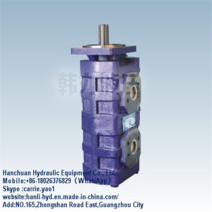 Hitachi Hydraulic Engine Double Gear Pump for Crawler Excavator (CBGJ2040/2050) pictures & photos