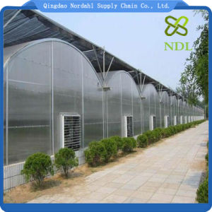 Multi Span Material Plastic Film Agriculture Greenhouse pictures & photos