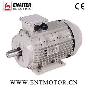 Asynchronous Induction IE2 Electrical Motor pictures & photos