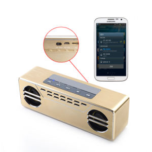Professional Audio Speaker with USB Charging Port-New Bluetooth Speaker pictures & photos