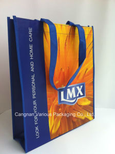 Recycle Non Woven Bag for Packing pictures & photos