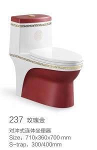 237 Decoate Siphonic One-Piece Toilet Set pictures & photos