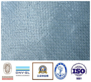 Fiberglass Fabric for Infusion pictures & photos