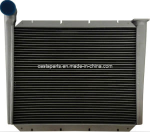 Intercooler for Renault 96920 pictures & photos