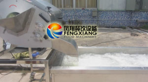 Cdwa-2000 Automatic & Continuously Running Vegetable Lettuce Cabbage Dicing Washing Line pictures & photos