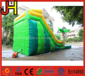 Best Quality Palm Tree Inflatable Water Slide pictures & photos