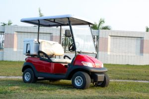 2 Seater Mini Electric Golf Cart for Tourist pictures & photos