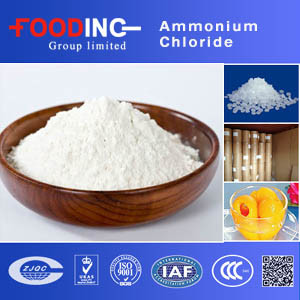 China Supplier Bulk Stock Ammonium Chloride 99.5% Purity for Medicine pictures & photos