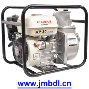 Stable Auto Water Pump (WP30) pictures & photos