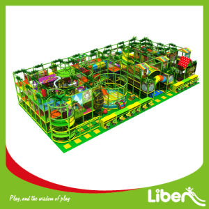 2015 Jungle Gym Theme Indoor Playground Park for Children pictures & photos