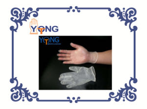 Vinyl Disposable Gloves with Powder