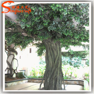 China Supplier Artificial Banyan Tree for Home Decoration pictures & photos