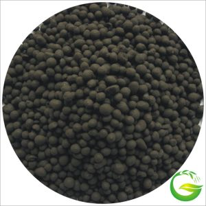 Qingdao Future Group Black Granular Humic Acid Fertilizer pictures & photos