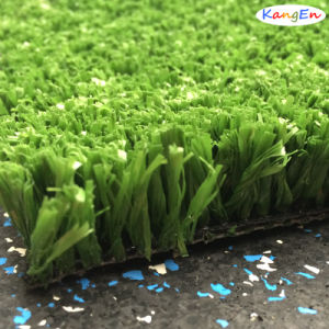 Synthetic Grass for International Hockey Field pictures & photos