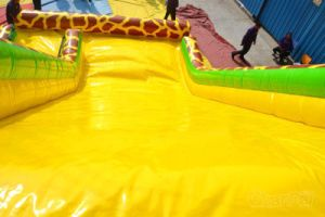 Giraffe Inflatable Slide/Giant Inflatable Dry Slide Chsl621 pictures & photos