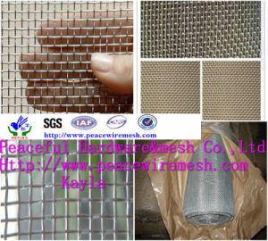 Hot-Dipped Galvanized Square Wire Mesh pictures & photos