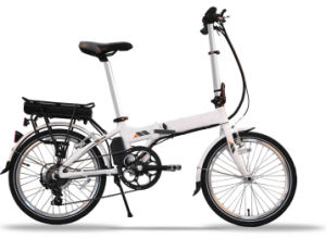 250W Cheap Price Electric Bicycle