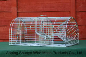 Galvanized Steel Wire Mesh Mouse/Rat Trapping Cage pictures & photos