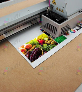 UV flatbed fullcolor digital printing aluminum sign board composite panel pictures & photos