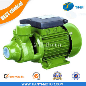 0.5HP Clean Water Garden Pump Electricity General AC Pump pictures & photos