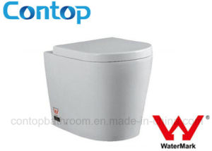Watermark Approval Floor Mounted Concealed Cistern Toilet pictures & photos