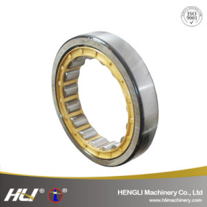 Designed for Carrying Radial Loads Cylindrical Roller Bearing pictures & photos