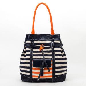 2015 Newest Designer Canvas Striped Bucket Lady Handbag (QC-15043B-1)