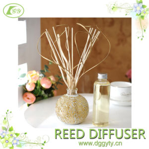 Gy Wooden Reed Diffuser with Exquiste Bottle for Home Deco and Air Purify pictures & photos