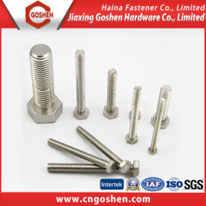 Stainless Steel 304 Full Thread Hex Head Bolt pictures & photos