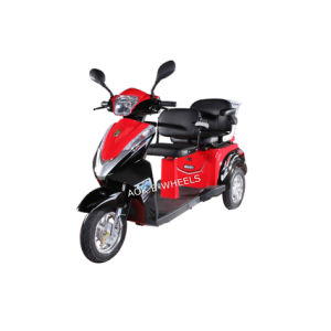 500W/700W 48V Motor E-Scooter with Two Seats pictures & photos