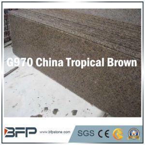 China Tropical Brown Natural Stone Granite Floor Tile, Counter Top pictures & photos