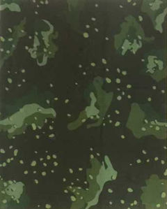Neoprene with Camo Style Fabric for Wetsuit (HX016) pictures & photos