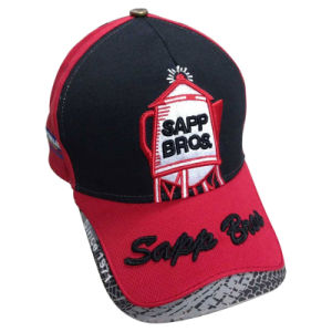 Constructed Baseball Cap with Heavy Embroidery pictures & photos