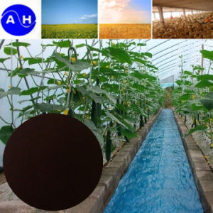 EDDHA Fe 6% for Organic Fertilizer Organic Agriculture pictures & photos