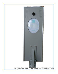 for Outdoor or Courtyard Solar LED Lighting 30W with 45wp Solar Panel Power pictures & photos