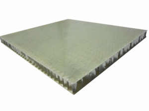Plastic Honeycomb Panels Fiberglass Honeycomb Panels pictures & photos