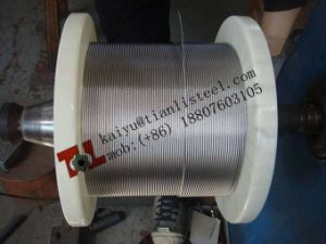 BS En12385 1.4301 A2 304 7X19 Stainless Steel Wire Rope pictures & photos